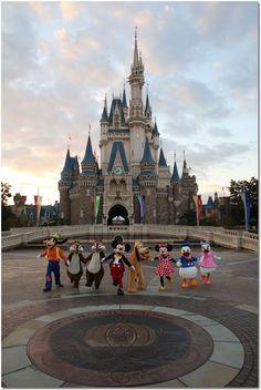 Walt Disney World Arte Disney, Disney Love, Disney Magic, Disney Stars, Disney Disney, Disney Vacations, Disney Trips, Walt Disney World, Chateau Disney