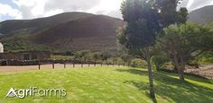 This guest farm is nestled in the mountains approximately 10 minutes drive outside Robertson with a view of the river valley. It welcomes 40 guests to. Beautiful Waterfalls, Irrigation, Campsite, Mountain Biking, Golf Courses, Cape, The Outsiders, Country Roads, River