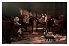 So cute this campaign for BOOKMARC - Marc Jacobs book store, with his dog Neville Jacobs and friends by David Sims <3