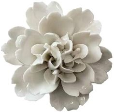 "Amazon.com: Insiswiner Ceramic Decorative Flowers 3D Wall Hanging Decor White 2.8"": Home & Kitchen"