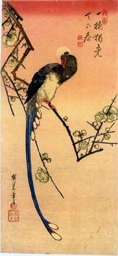ANDO HIROSHIGE. Dibujante, grabador y pintor japonés. 1797 en Edo (actual Tokio)-1858 (en la misma ciudad.)