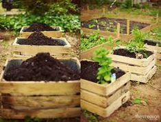 DIY Gardening - http://www.vertical-gardener.com/how-aquaponics-works/