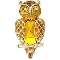 Charter Club Gold-Tone Topaz Glass Stone Owl Pin ($12) ❤ liked on Polyvore featuring jewelry, brooches, brooch, accessories, owl, pin, polish jewelry, charter club, glass bead jewelry and owl jewelry