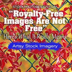 What Royalty-Free Really Means for Imagery is probably not what you think it is. Here's our easy to understand explanation. Improve Photography, Photography Articles, Amazing Photography, Stock Imagery, Photo Search, Royalty Free Images, Cool Photos, Stock Photos, Hustle