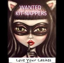 Did you know? You don't have to be a Younique  Presenter to get the kit!! You can be a Kitnapper!! Over $200 of Younique product for $99!!! Go to www.susanslashenvy.com and  click 'JOIN'