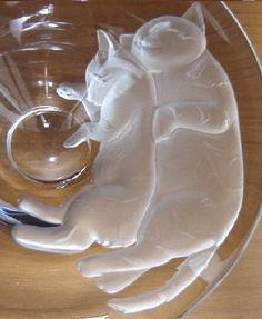 glasswatabe cat