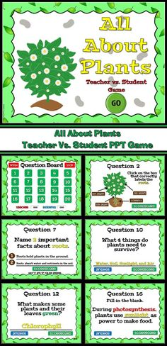 This powerpoint game review plants in general including parts of the plant and what each part does. This games has different questions which include identifying different parts of a plant, what each part does and how plants make foods.