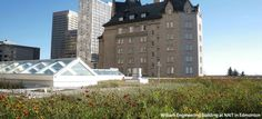 Improving green roof performance