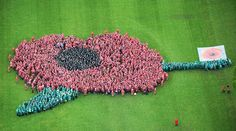 World record - largest human poppy, created 2nd May 2014 at Farnborough to commemorate the beginning of WW1, and celebrate the Royal British Legion.