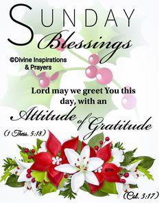 Good Day Quotes, Good Morning Quotes, Good Morning Messages, Good Morning Images, Sunday Morning, Happy Sunday, Sunday Inspiration, Morning Blessings, Morning Greeting