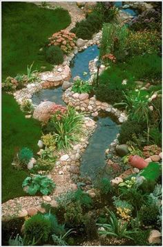 Backyard pond - Garden / Yard - Pond / Water Feature #GardenPond