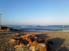 23 Jamaican Palms, Marina Martinique, Jeffreys Bay - Lofts for Rent in Jeffreys Bay, Eastern Cape, South Africa Lofts For Rent, Tree Line, Mecca, Beautiful Sunset, Palms, Palm Trees, South Africa, Surfing, Water