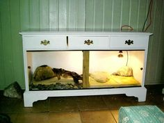 turn dresser into shelves | Moriarty's new viv is finished