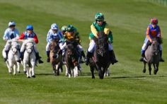 Runners and riders taking part in the Shetland Pony Grand National at Newmarket Racecourse