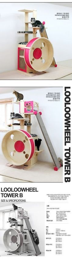 LooLoo Cat Wheel And Cat Tower. I Have GOT To Build One Of These! get some yourself some pawtastic adorable cat apparel! Cat Exercise Wheel, Cat Gym, Diy Cat Tree, Cat Hacks, Cat Stands, Cat Shelves, Cat Playground, Cat Enclosure, Cat Condo