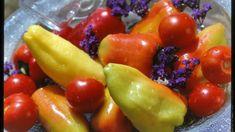 Je vrchol sezony plodové zeleniny, už nejen ve skleníku nebo fóliovníku, ale i na volné ploše dozrávají okurky, rajčata a paprika.