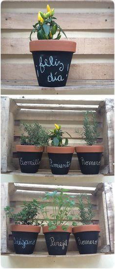 Horta em Casa (Vegetables Garden In Your Home) Herb Garden, Garden Pots, Vegetable Garden, Herb Pots, Painted Pots, Green Life, Clay Pots, Dream Garden, Garden Projects