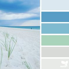 today's inspiration image for { horizon hues } is by @ozgecenberci ... thank you, Ozge, for another incredible #SeedsColor image share!