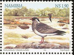 Rock Pratincole stamps - mainly images - gallery format