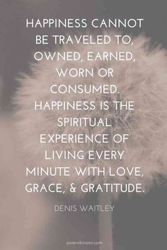 """Happiness cannot be traveled to, owned, earned, worn or consumed. Happiness is the spiritual experience of living every minute..."" — Denis Waitley"