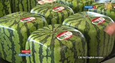 Cubic watermelons