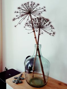Dried giant hogweed - New Deko Sites Home Living Room, Living Room Decor, Bedroom Decor, Vase Deco, Motif Art Deco, Deco Floral, Home And Deco, Dried Flowers, Interior Inspiration