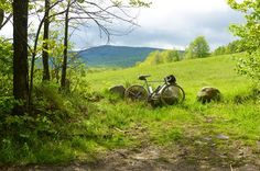 Bikes travel to beautiful places.
