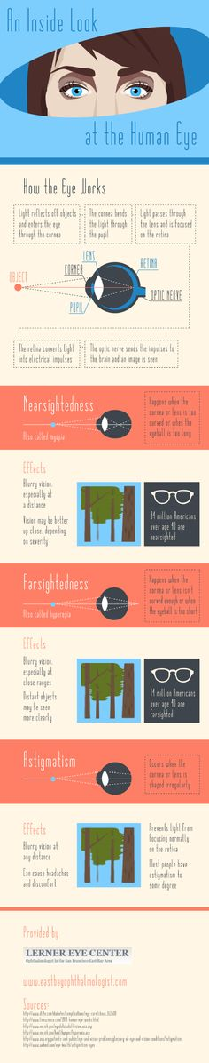 An Inside Look At The Human Eye    #Infographic #Eye #HumanEye