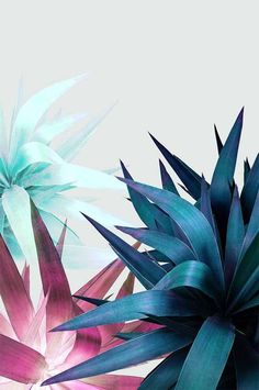 Awsome Tropical Leaf Printable Wall Art by #PrintsProject