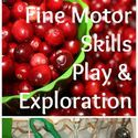 The Best Fine Motor Skills Activities of 2013 (A Fine Motor Fridays Linky!) - LalyMom
