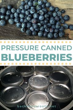 Easy Canning, Canning Tips, Bake Blueberry Cheesecake Recipe, Pressure Canning Recipes, Eat Meals, Canned Blueberries, Canning Vegetables, Canned Meat, Half Pint