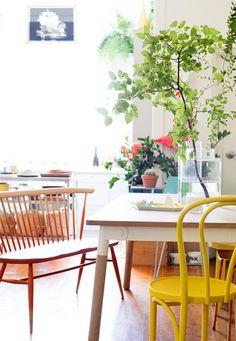 Plantes et lumières / via Lejardindeclaire