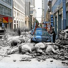 Photographer Shawn Clover created a set of composite photographs of San Francisco, California, blending pictures from the 1906 earthquake that hit the city with present day images. Sacramento, Photo Blend, San Francisco Earthquake, Then And Now Photos, Montage Photo, Paris Match, Comme Des Garcons, Photos Du, Natural Disasters