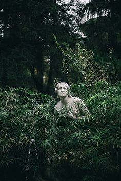 Most current Absolutely Free Sculpture Garden aesthetic Thoughts Statue landscapes are usually outdoor gardens devoted to sculpture demonstration, often a number of once and Frühling Wallpaper, Dark Green Aesthetic, Nature Aesthetic, Aesthetic Names, Statue Antique, Slytherin Aesthetic, Parcs, Hogwarts, Slytherin Pride