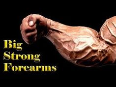 3 Best workouts for massive FOREARMS - YouTube