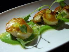 Scallops with green pea puree