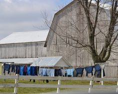 "2nd Place Winner! ""Laundry Day"" Photo Credit: Bethany Kenney New Wilmington, PA"