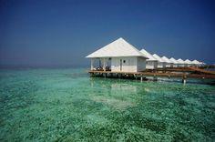 Diamond thudufushi island resort #voyagewave #themaldives -->>> www.voyagewave.com