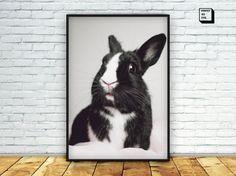 nursery decor nursery wall art bunny print nursery by PrintmyInk