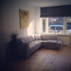 Grey Platinum Couch with a Sjer Jacobs Painting and wooden floors!