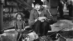 Shree 420 Review : Bollywood Classic of 1955 | Filmy Keeday