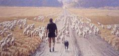Road's End by Barry Ross Smith for Sale - New Zealand Art Prints