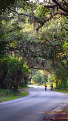 Going Camping? Here's A List Of The Leading 20 Campsites In North America – Locations To Camp Places In Florida, Visit Florida, Florida Vacation, Florida Travel, Florida Beaches, Travel Usa, Florida Living, Fernandina Beach Florida, New Smyrna Beach Florida