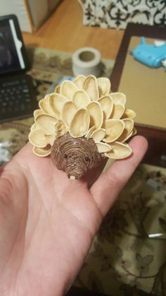Pistachio Shell Porcupine 1