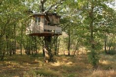 Pete Nelson tree house_1600_400