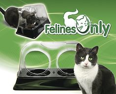 Felines Only - The Purrrfect Cat Dish Products That Work LLC http://www.amazon.com/dp/B00NLYC7PS/ref=cm_sw_r_pi_dp_MnnBub1XK8JT9