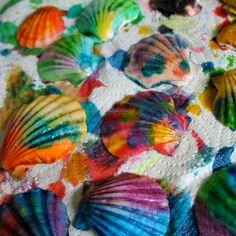 Pretty Painted Seashells are lovely post-vacation nature crafts for kids. Collect a variety of seashells at the beach, then paint them in every color and use them in other kids craft projects or keep them in a treasure box!