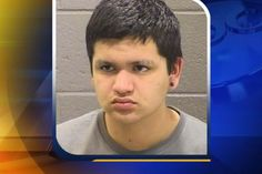 Handcuffed teen 'shot himself' in back of cop car