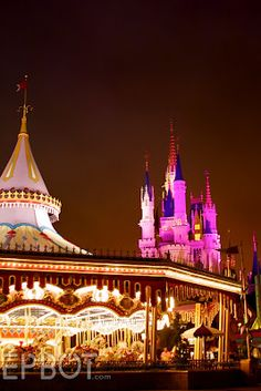 Carousel & Castle ('cuz you know I can't pin just one!)