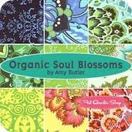 Image result for amy butler soul blossoms organic